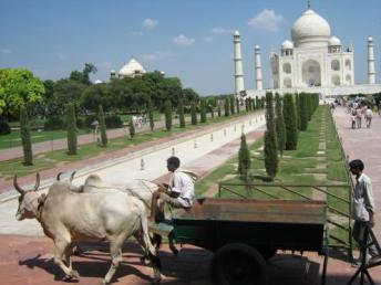 The pearl of India, the Taj Mahal